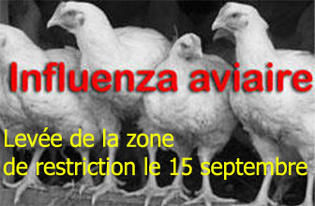 Influenza aviaire : levée de la zone de restriction le 15 septembre 2016